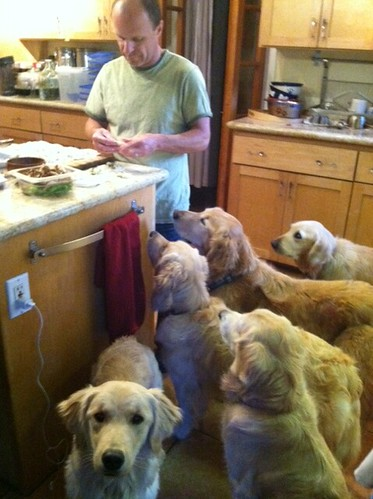 Eric making Gyouza with furry assistants