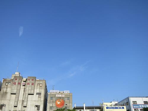 risu-center