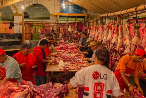 Os carnívoros piram em São Luis de Paraitinga!! by kassá