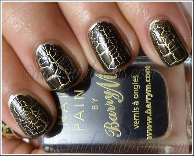 Barry M Croc Effects 1