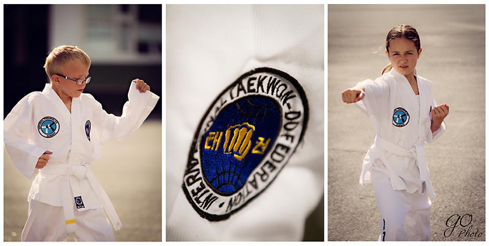 taekwondo web