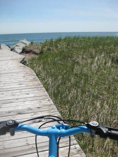 Bike, Board and Blue