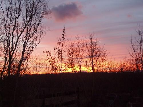 20050106_01_sunrise