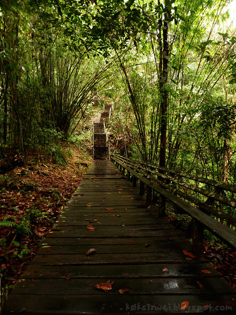 Mount Singai Trek Boardwalk