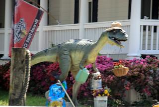 Tybee Raptor