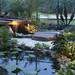 lighting-walkways-trees-landscapes-venice-nokomis-fl-8