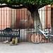 El borracho y la bicicleta por jaropi
