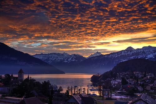alps bern schweiz spiez suisse suiza svizzera swiss switzerland thunersee dawn lake sunrise winter