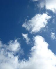 """""""Sky"""""""