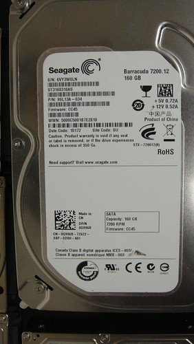Data Recovery ST3160318AS