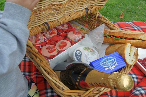 French Family Picnic