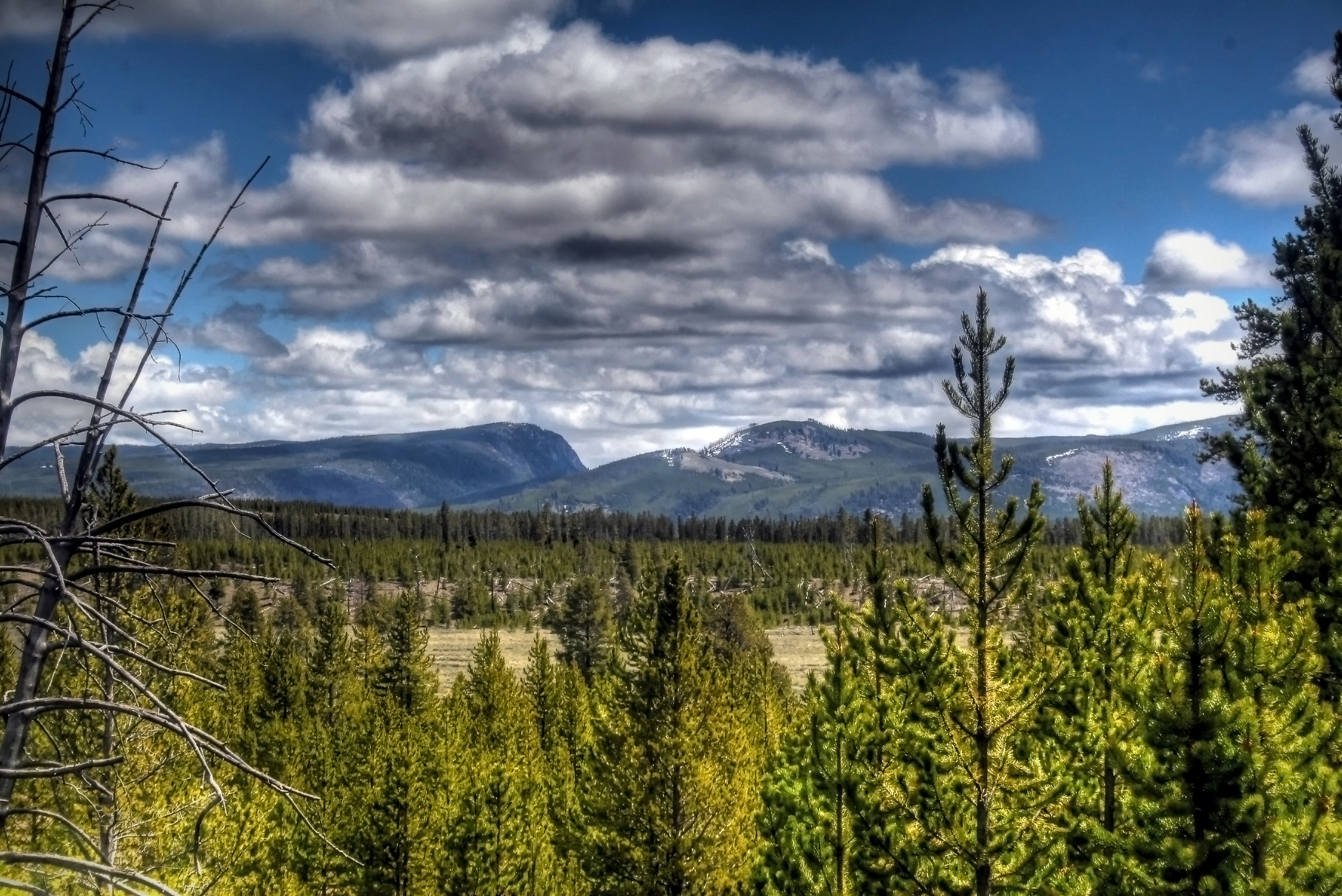 Yellowstone Elevation : Elevation of campground west yellowstone mt usa