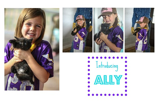 Ally Collage