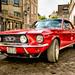 Ford Mustang ©Kay Gaensler