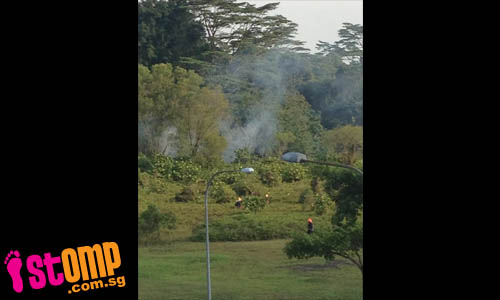 Firefighters put out forest fire at Sembawang