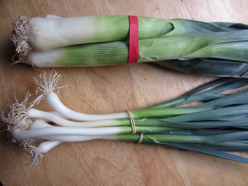 Leeks: big and small