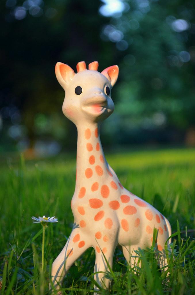Gefährliches Spielzeug? Giraffe Sophie