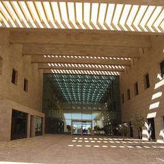 Universidad Carnegie Mellon de Catar