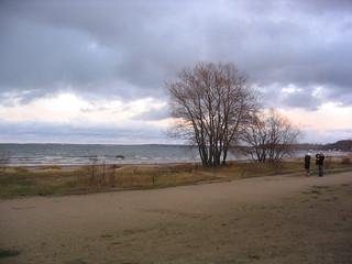 Tallinn coastline
