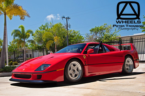 Ferrari F40 Paint Correction