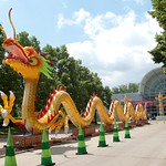 Misssouri Botanical Garden Dragon Festival 2012 26