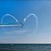 DRITTO AL CUORE...........STRAIGHT TO THE HEART by ◕‿◕colpo d'occhio◕‿◕