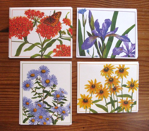 Vintage Current Meadow Medley Notecards 1