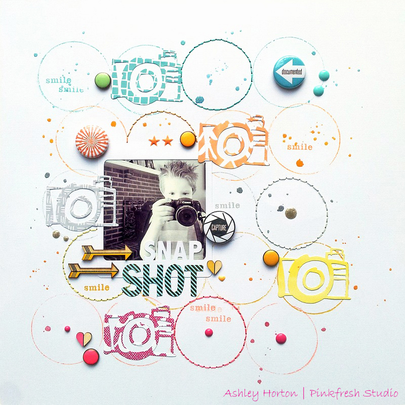 Snap Shot1