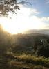 Buena Vista Park Sunday sunset