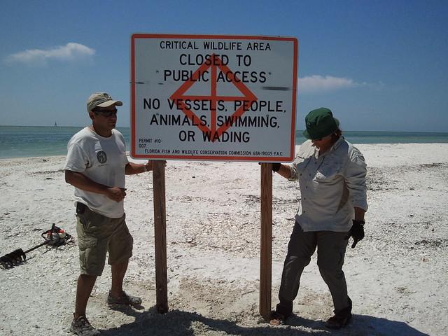 Sand Dollar Marco Island Fl