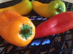Roasted Sweet Pepper Dip by mikeysklar
