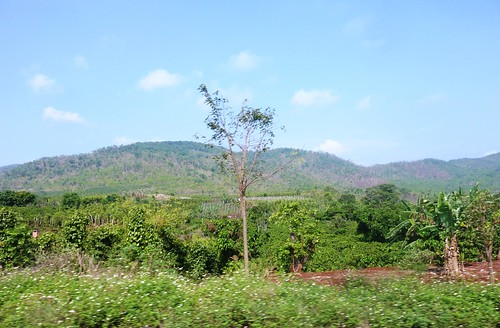 V-Route Buon Ma Thuot-Pleiku (14)
