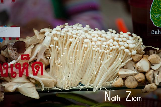 thailande_champignons
