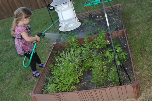Our Family Garden