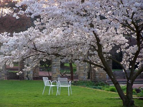 Nordpark M�rz 2012 056