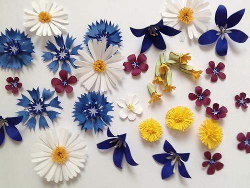 blommor_pa_vitt