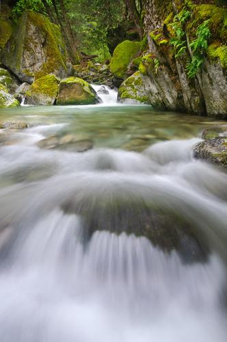 california ca fern water creek moss cascade redding whiskeytown brandycreek