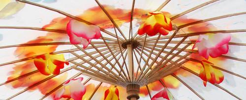 Floral Parasol Umbrella