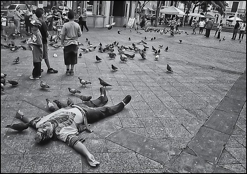 Palomas y Hombre en el suelo (Doves and Man In The Floor)
