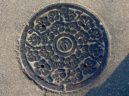 Agui Aichi manhole cover 2 (愛知県阿久比町のマンホール2)