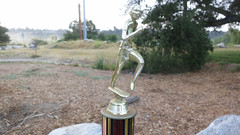 This year's trophy