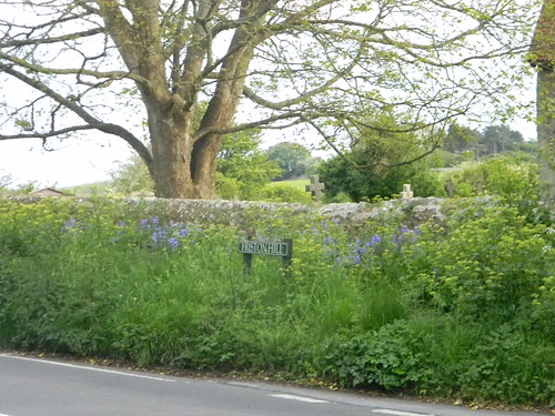 Verdant wall, Friston
