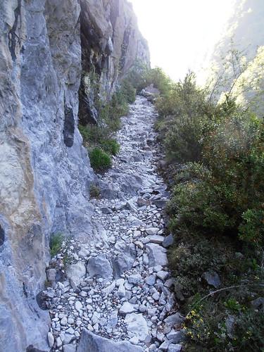 LA MATURE (chemin) 054