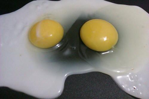 144/366: Eggs