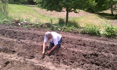 garden(0.0), agriculture(1.0), sowing(1.0), field(1.0), soil(1.0), plantation(1.0),
