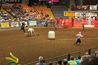 Rodeo: Clownpuppe vom Stier gehörnt