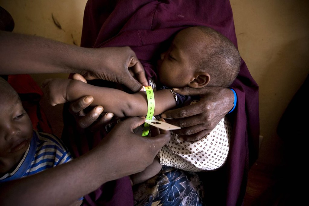 UNHCR News Story: One year on, thousands flee Somalia every month, but successes too