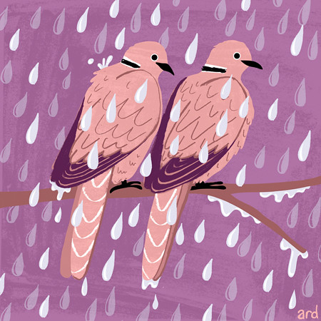 Doves by ardillustration