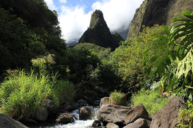 Iao Needle Cover Shot