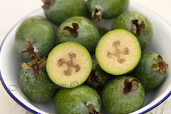 Food_Feijoa_1795-59-adjust